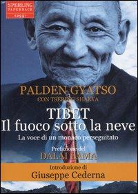 The Autobiography of a Tibetan Monk